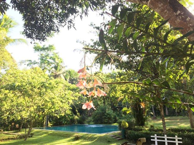 8 días retiro de yoga, meditación y Ayurveda en Kalutara, Sri Lanka