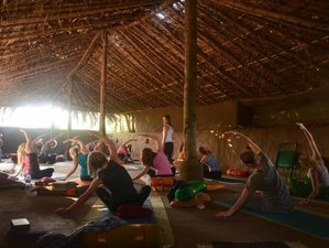 9 Days Cooking, Meditation, and Yoga Retreat in India