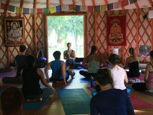 3 Days Shanti Yoga Retreat in Ontario, Canada