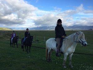 4 Day Traditional Farm Stay and Beginner-Friendly Horse Riding Holiday in Hvolsvöllur