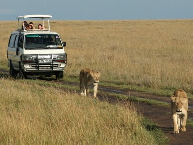2 Days Guided Wildlife Safari in Kenya