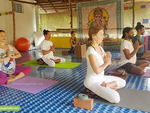 28 Days 300-Hour Kalari, Ayurveda, and Yoga Teacher Training in Varkala, Kerala, India
