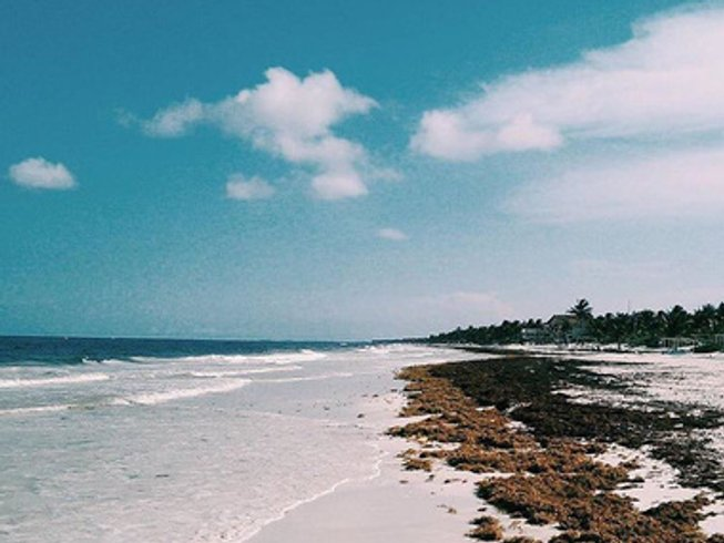 6 Days Rest and Reconnect Meditation and Yoga Retreat in Tulum, Mexico