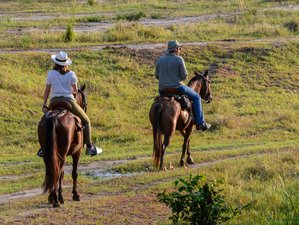 4 Day Intensive Horseback Riding with a Ranch Visit in Honda, Tolima