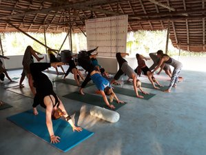 42 Days 300-Hour Advanced Yoga Teacher Training in Varkala, India
