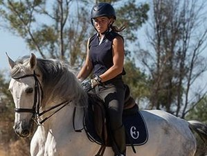 7 Day Classical Dressage Intensive Training Program in Seville