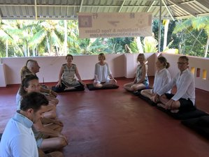 5 Days Meditation and Yoga Retreat in India