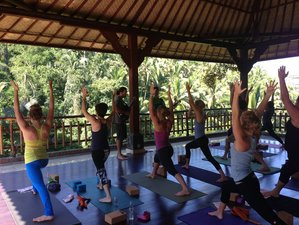 7 Days Cultural Heritage and Yoga Retreat in Bali
