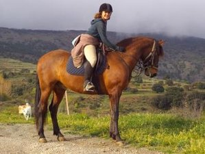 5 Day Captivating Horse Riding Holiday in Lanjaron, Granada