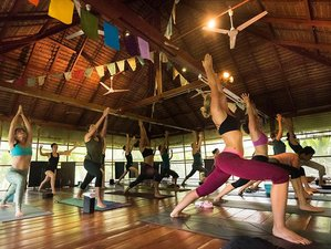 30 Days 200-Hour Vinyasa Yoga Teacher Training Koh Phangan, Thailand