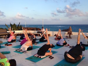 6 Days Meditation and Yoga Retreat Mexico