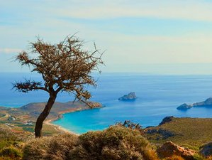 8 Days Kirtan, Mantra, and Classic Yoga holiday in Crete, Greece