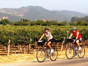 6 Days Cycling and Yoga Retreat in San Juan Islands, USA