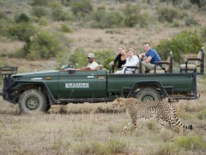 7 Days Enliven Safari in Cape Town and Eastern Cape