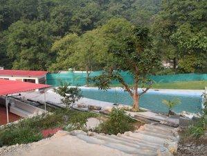 5 Day 50-Hour Yoga Teacher Training Course in Adhiroha, Rishikesh