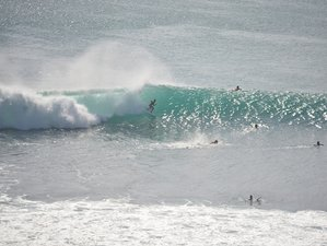 7 Days Guided Tour and Surf Camp Bali