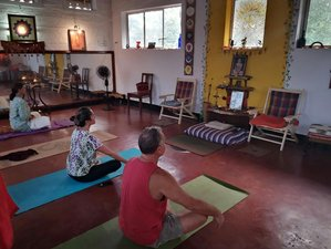 7 Day Ayurvedic Massage, Yoga and Meditation Retreat in Fort Kochi, Kerala