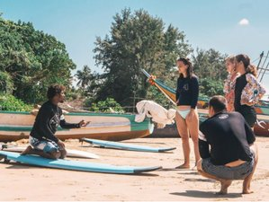 11 Day Private Group Trip Yoga and Surf Camp For 6 People in Mirissa