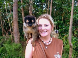 12 Days Budget Safari in Madagascar