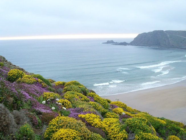 5 Days Couple's Surf and Yoga Retreat in Portugal