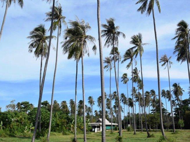 3 Week Private Group Ninja Martial Arts & Fitness on Samui Island, Thailand