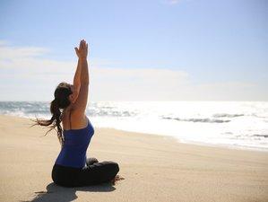 11 Days 100-Hour Bhakti Yoga Teacher Training Baja California Sur, Mexico