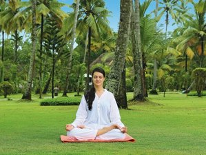 8-Daagse Yoga en Ayurveda Retraite in Kerala, India