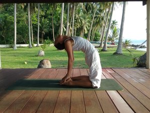 22 Day 200-Hour Yoga Teacher Training in Koh Samui, Surat Thani