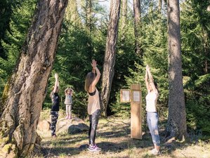 3 Days Yoga and Meditation Weekend in the Mountains in Veysonnaz, Valais