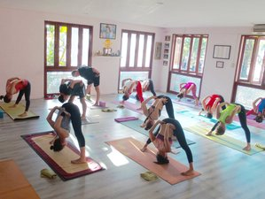 14 Days Detox and Yoga Therapy in Phuket, Thailand