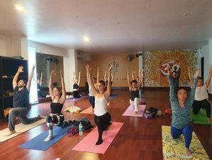 Self-Paced Online 300-Hour Multi-Style Yoga Teachers Training Course