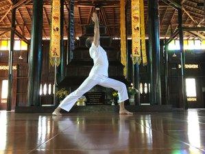 7 Days Ashtanga Yoga & Nutrition Retreat in Malaga, Spain