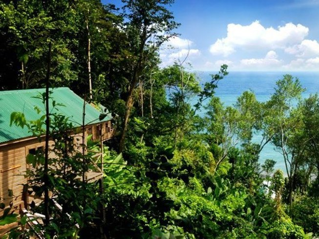 7 Days Yoga and Jungle Spa Adventure in Dominica