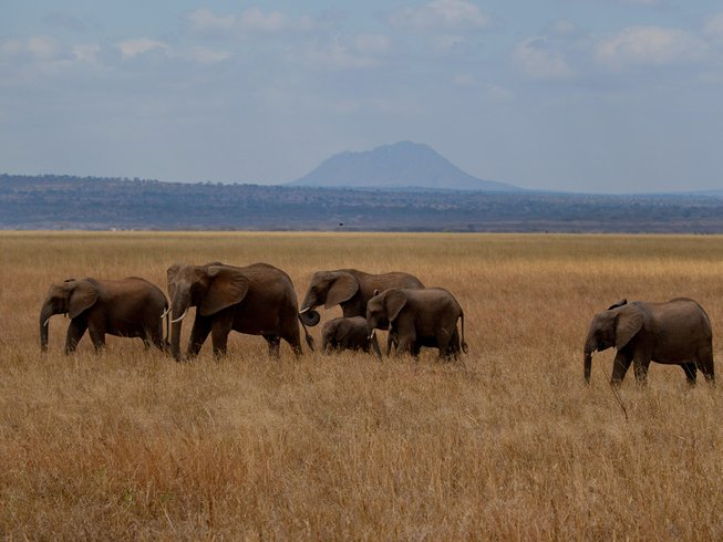 4 Days Big 5 Safaris in Tanzania