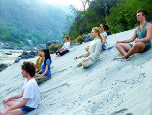 6 Day 50-Hour Aerial Yoga Certified Course in Rishikesh, Uttarakhand