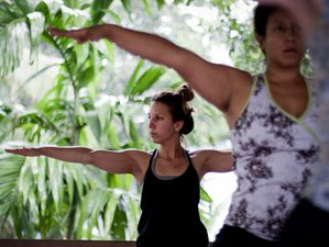 6 Day Vegan Yoga Tour, Ayurveda Culinary, Backwater Kayaking Beach Harbour in Kerala