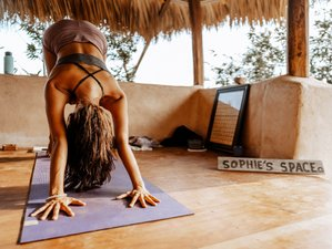 4 Day Private Mini Surf Vacation, Meditation, and Yoga Retreat in Puerto Escondido, Oaxaca