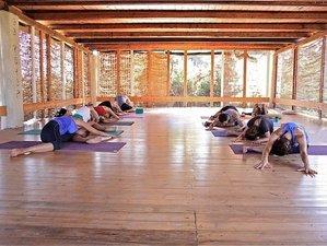 8 jours transformatifs: stage de yoga, méditation, mouvement sur la superbe île de Paros, Grèce