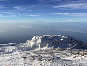 7 Days: Conquer Mount. Kilimanjaro and Mkomanzi Park Safari