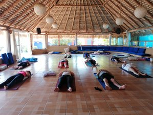 3 Day Pranayama, Meditation, and Yoga Retreat in Tapalehui, Morelos