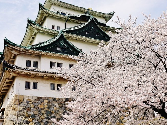 10 Days Spring Culture and Culinary Tour Japan
