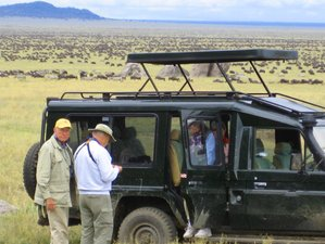 7 Days Camping Safari Wildebeest Migration:  Serengeti, Lake Manyara, Ngorongoro, and Tarangire