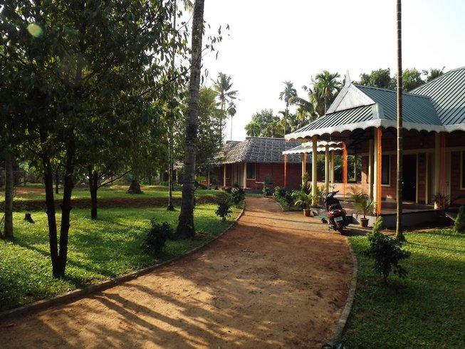 14-Daagse Wellness, Meditatie en Yoga Retraite in Kerala, India