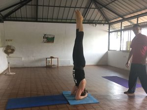 11 Day Refreshing Yoga Holiday in Kerala