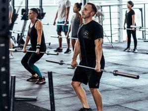 1 Week Fitness Retreat in Koh Samui, Surat Thani