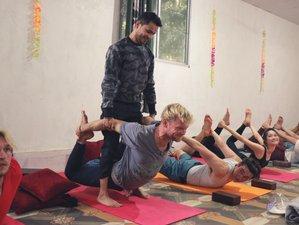 14 Day 100-Hours Multi Style Yoga Teacher Training in Rishikesh