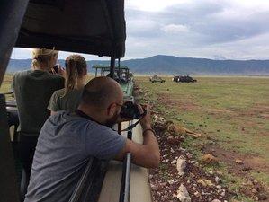4 Days Amazing Adventure Safari in Tanzania