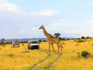 9 Days Safari Honeymoon Package Kenya