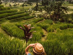 Personal Epic 3 Day Wellness Burst in Bali, Indonesia