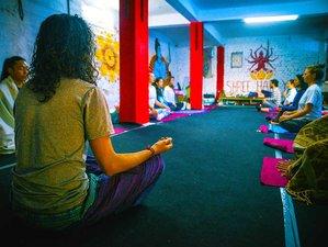 25 Day 200-hour Vinyasa Yoga Teacher Training in Dharamshala